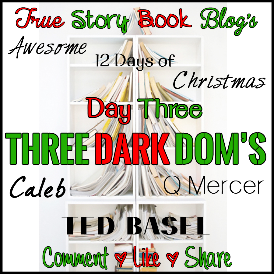 True Story Book Blog\'s Awesome 12 Days of Christmas! Day Three…*~*